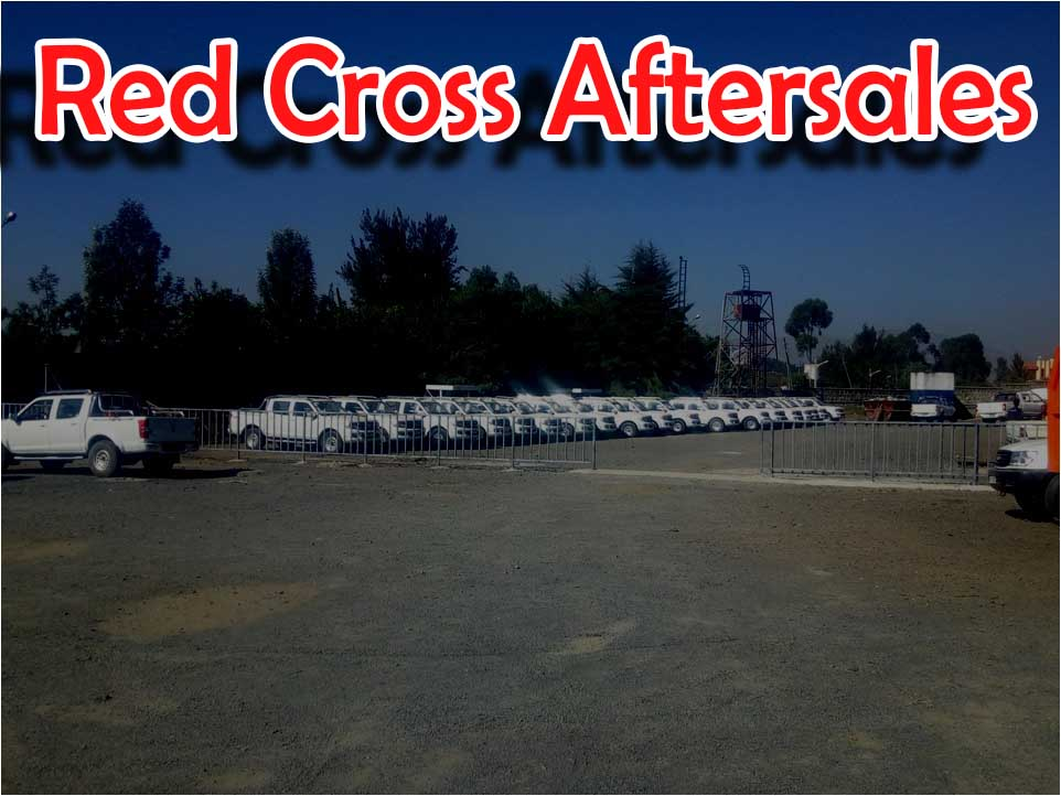 Red Cross Branch